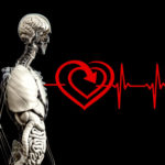 Atrial Fibrillation-What it is, its symptoms and its treatments